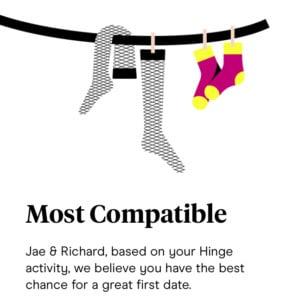 Hinge most compatible
